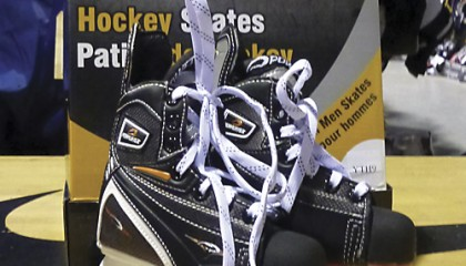 New Powertek Recreational Skates